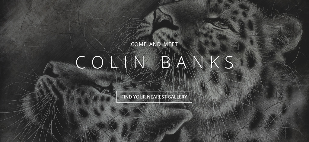 Come and Meet Colin Banks