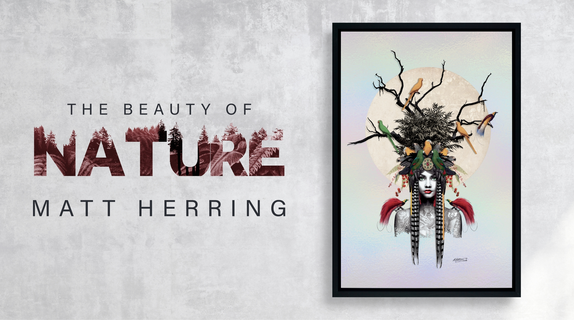 Introducing Matt Herring  image